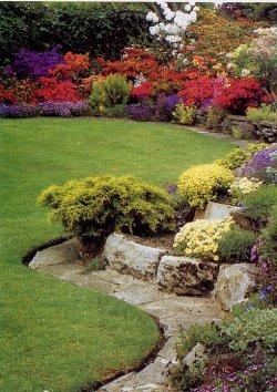 Piante ornamentali da giardino rendere bello ed elegante for Piante da giardino roccioso
